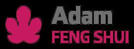 Adam Feng Shui
