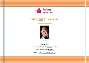 Ebook – Ming Kua 4 – Vizionář