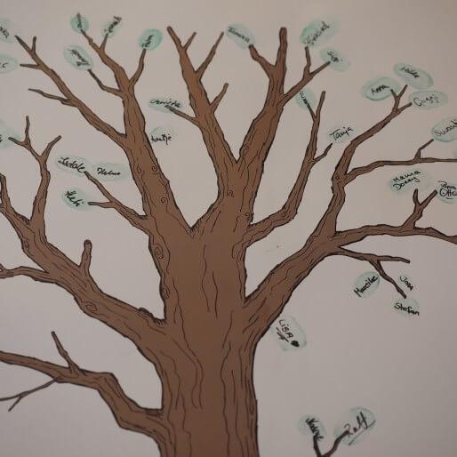 Tree 693807 1920 514×514